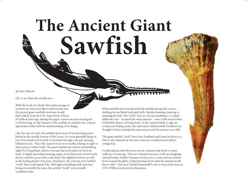 Ancient Giant Sawfish